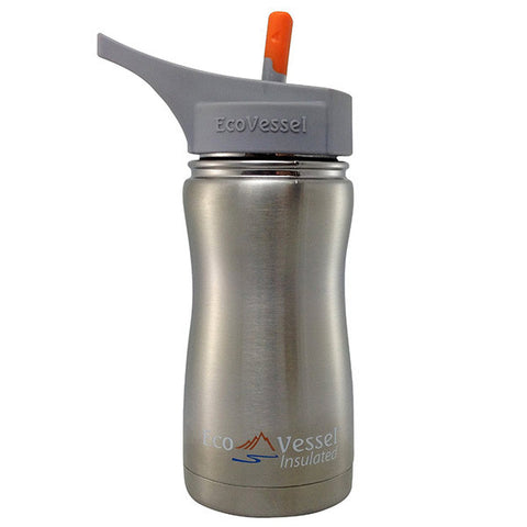 Frost Insulated Stainless Steel Bottle Silver Express