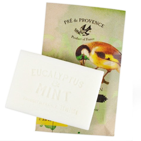 Private Collection Soap Bar - Eucalyptus & Mint - European Soaps