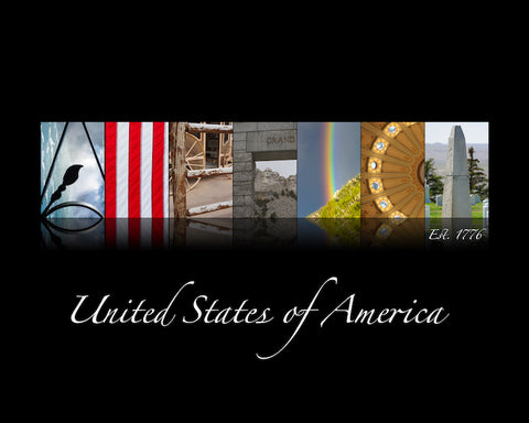 TLC Interactive Artwork | AMERICA