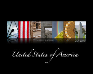 AMERICA | Interactive Artwork