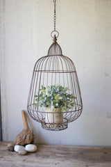 Hanging Rustic Wire Bird Cage Plant Holder