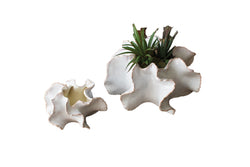 SET OF TWO ORGANIC CERAMIC PLANTERS