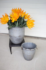 Set of Two Galvanized Planters with Rolled Edges