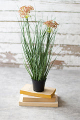 Artificial Potted Onion Grass with Two Flowers