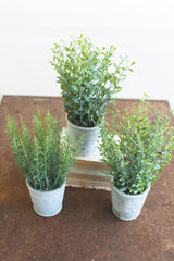 Set of Three Artifial Herbs in Cement Pots