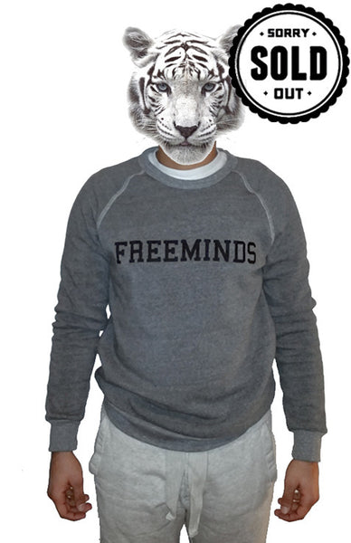 Freeminds Sweater - Grey