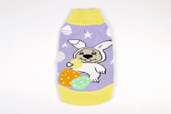 Dog Easter Sweater Egg Hunt