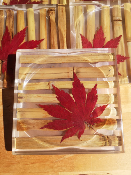 Bamboo with maple leaf coaster