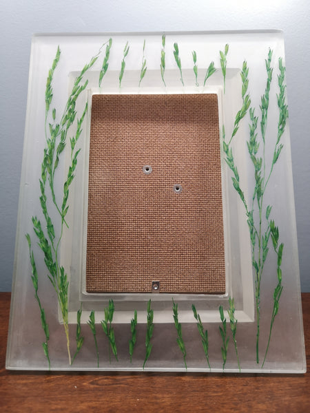 Green rice stalks picture frame