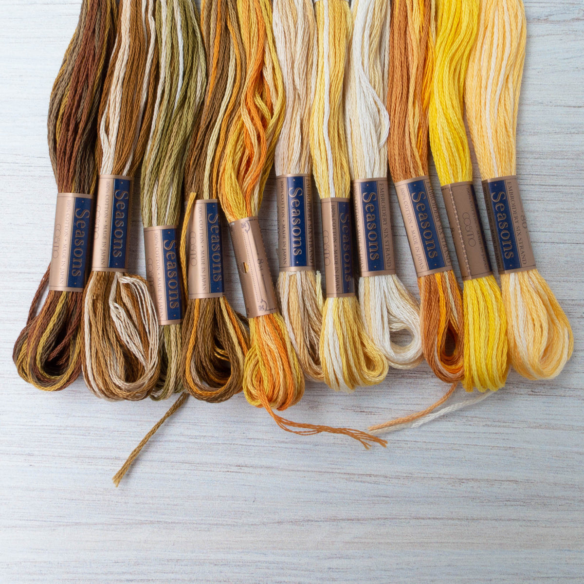 Cosmo Seasons Variegated Embroidery Floss (8027 - 8037)