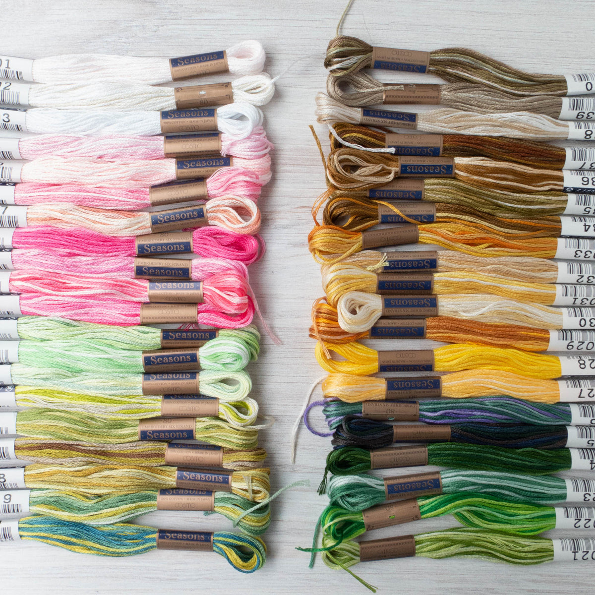 Cosmo Seasons Variegated Embroidery Floss Set - Early 8000s Collection (8001-8040)