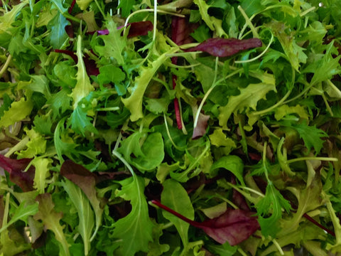 Baby Leaf Salad Mix (large)