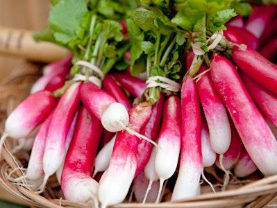 French Breakfast Radishes (1 Bunch)