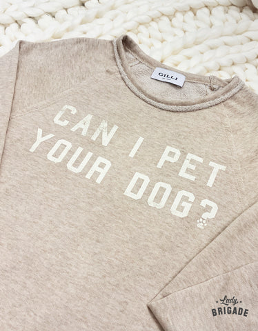 Can I Pet Your Dog? Pullover Sweater  - USA Made