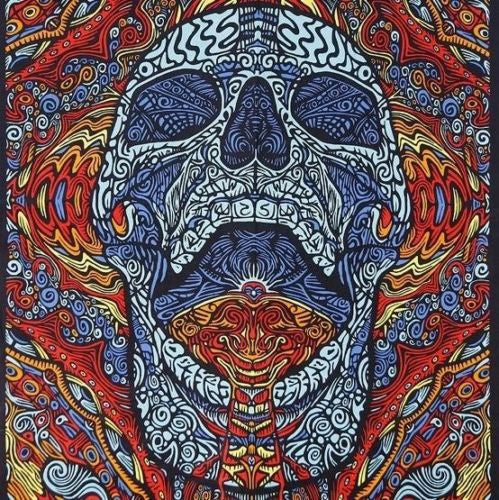Handmade 100% Cotton 3D Mindful Skull Tapestry Tablecloth Beach Sheet 60x90 Blue - Sweet Us