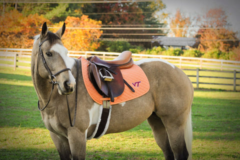 Virginia Tech Saddle Pad in Orange