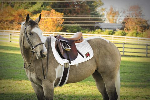 University of Maryland Saddle Pad