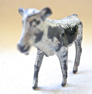 Britains calf, white and black, early