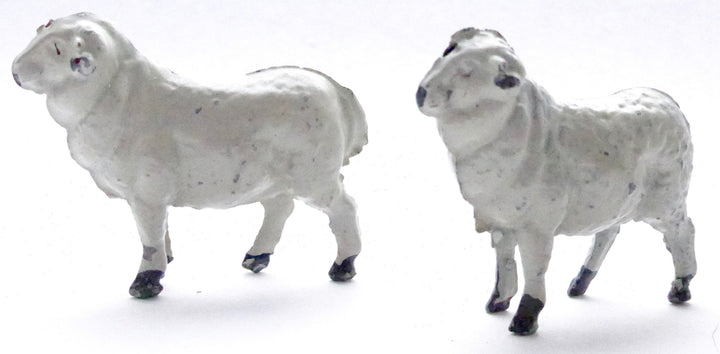 Cherilea sheep, two white