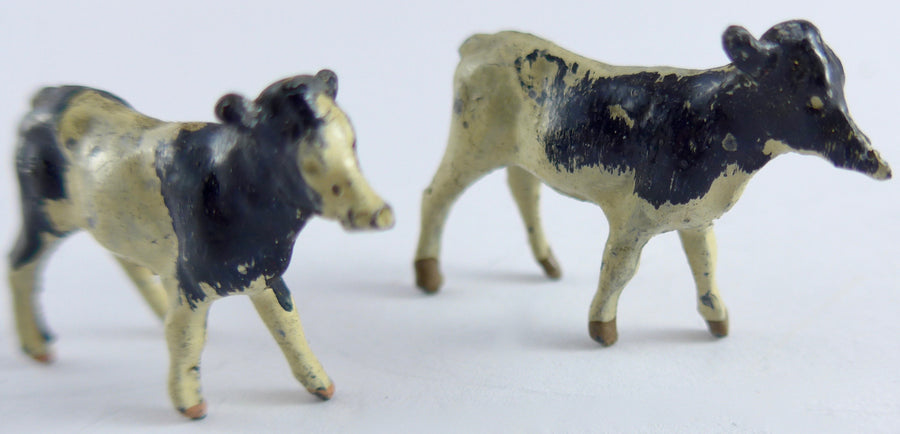 Two Britains calves standing, first version, white & black
