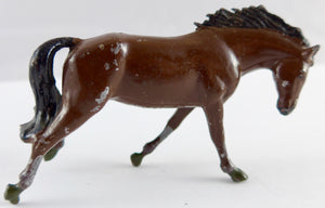 Britains wild horse for farm or rodeo