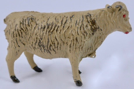 Johillco Highland cattle beige