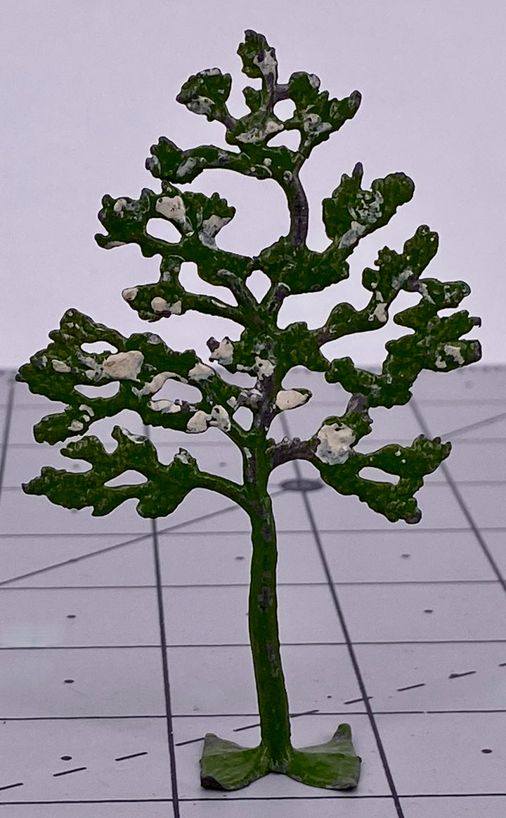 Small Britains tree with white foliage