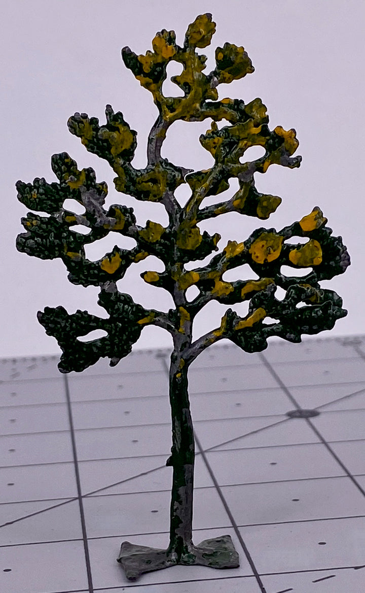 Small Britains tree with yellow foliage