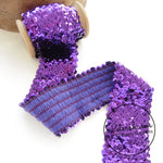 6cm Wide Elasticated Sequin Trim - 1m
