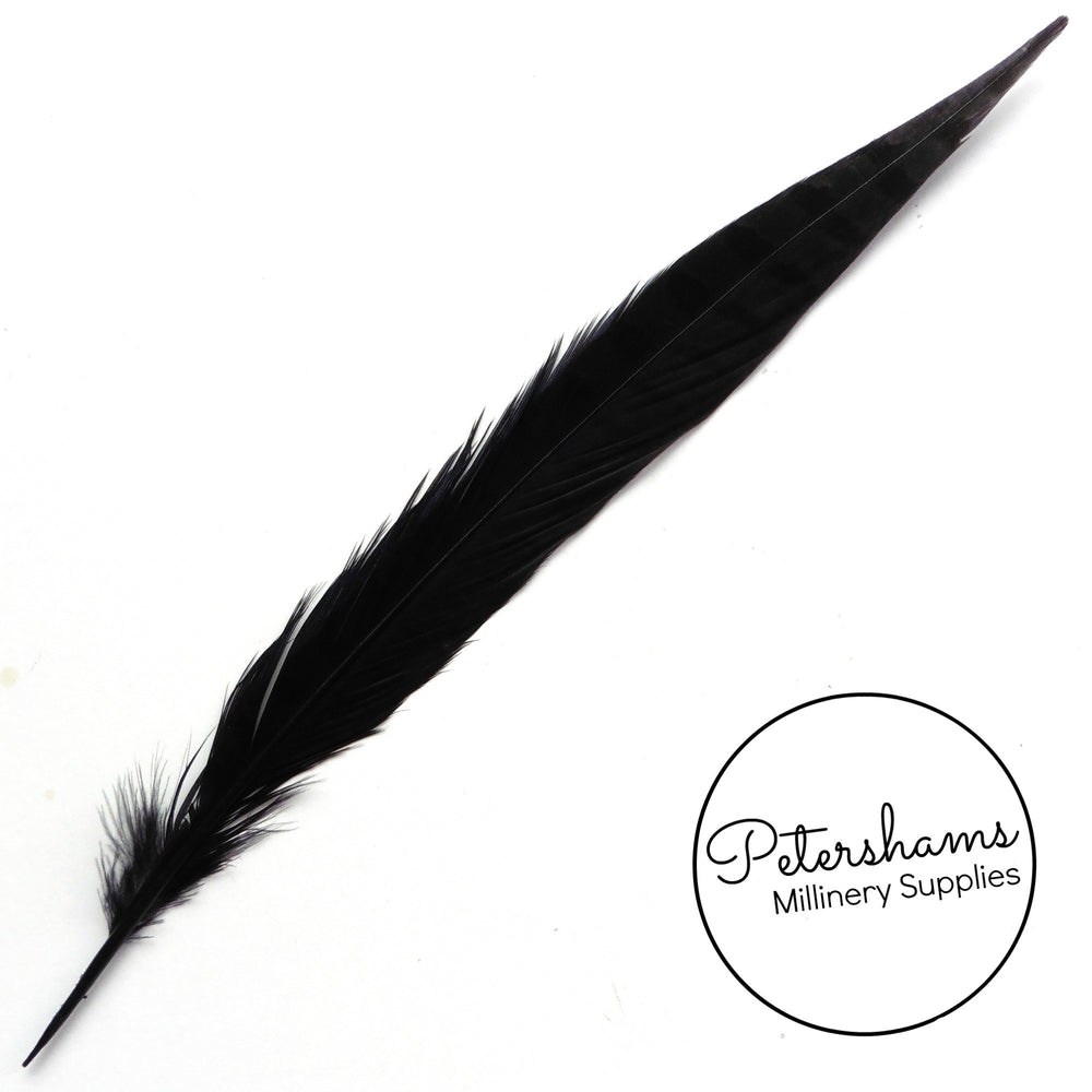 Pheasant Side Tail Feather 30-35cm - Single Feather