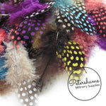 Guinea Fowl Feather Loose - 10g