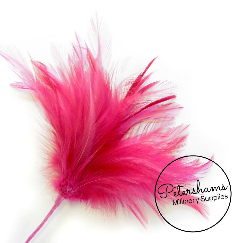 Fluffy Hackle & Goose Biot Feather Mount
