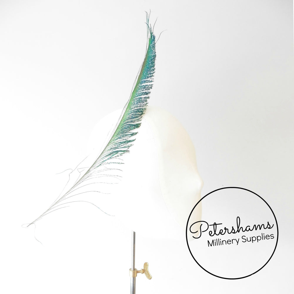 Single Peacock Sword Feather