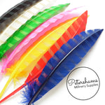 Striped Pattern Goose Quill Feather - Single Feather