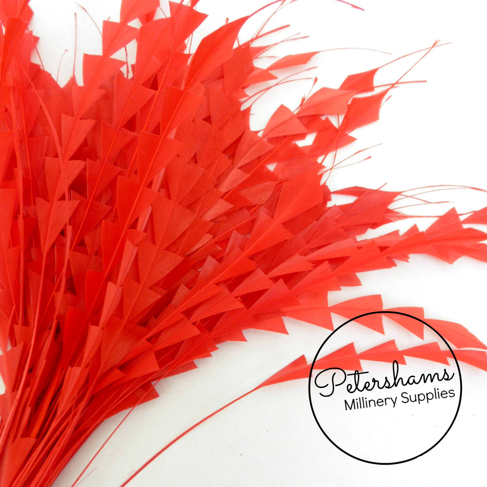 Zig Zag Coque Feathers - Pack of 5