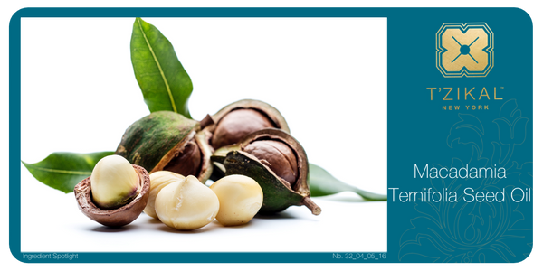 Ingredient Spotlight: Macadamia Ternifolia Seed Oil