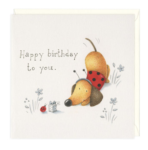 Ladybird Birthday Dachshund Greeting Card
