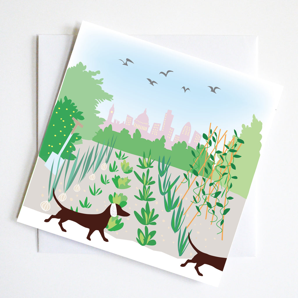 Dachshund Gift Wrap Greeting Cards