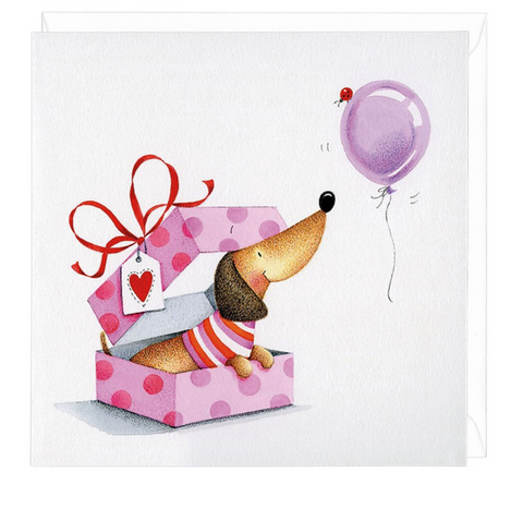Dachshund  Surprise Greeting Card