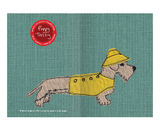 Wire- Haired Dachshund A5 Notebook