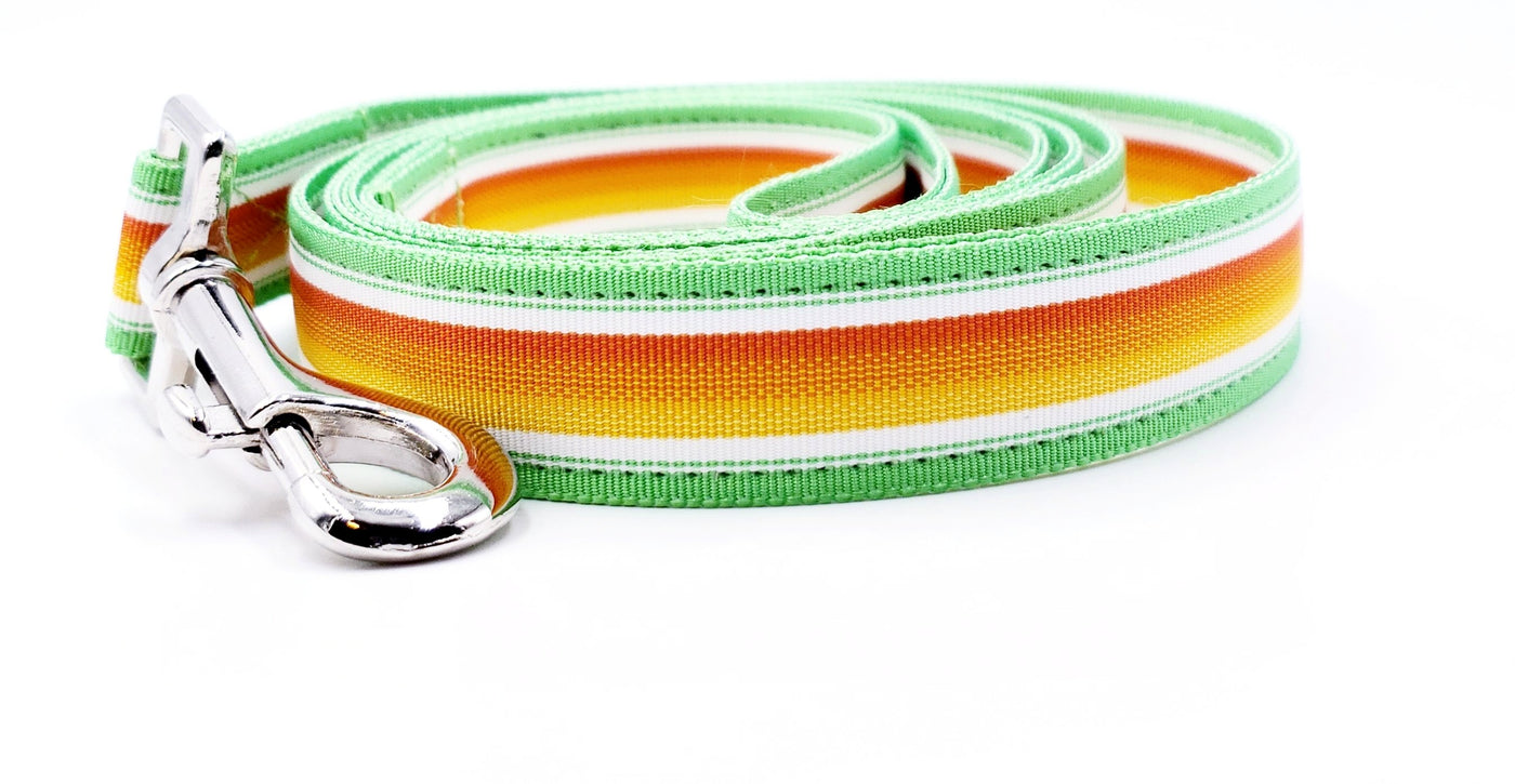 Phoenix Dog Leash - FH Wadsworth