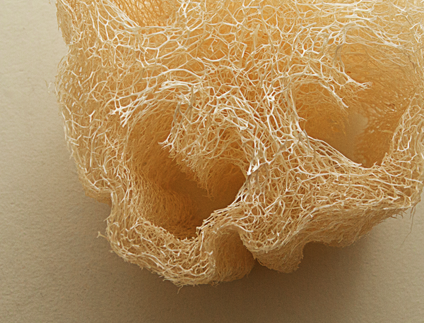 Natural Luffa sponge compostable