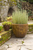 Butterfly Pot in Ancient Stone Finish