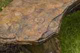 Fossil Bench - Curved in Ancient Stone