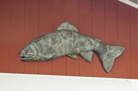 Hanging Trophy Fish in Western Slate