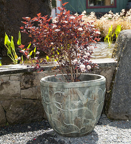 Hummingbird Pot in Western Slate Finish