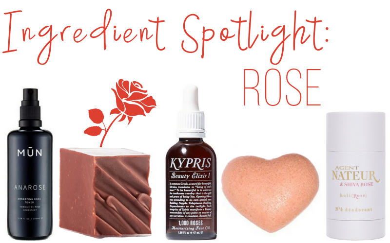 ingredient spotlight: rose