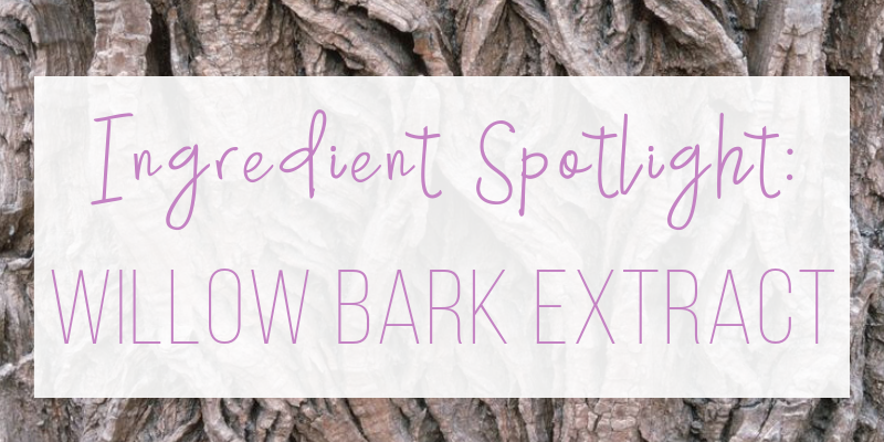 ingredient spotlight: willow bark extract