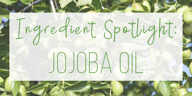 ingredient spotlight: jojoba oil
