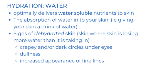 hydration: water. optimally delivers water soluble nutrients to skin. the absorption of water in to your skin (ie giving your skin a drink of water). signs of dehydrated skin (skin where skin is losing more water than it is taking in): crepey and/or dark circles under eyes, dullnes, increased appearance of fine lines